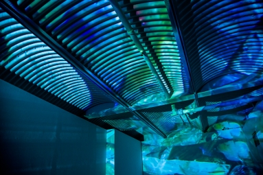 Illuminosity Installation View First Site Gallery 2011 (4)