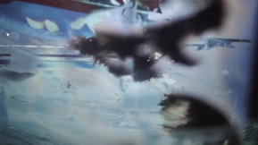 Linda Loh cloud light blurs-1