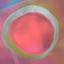 Circles Perspex 3.Still010